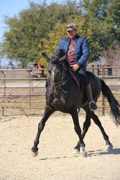 Legado going lateral...this horse can move!