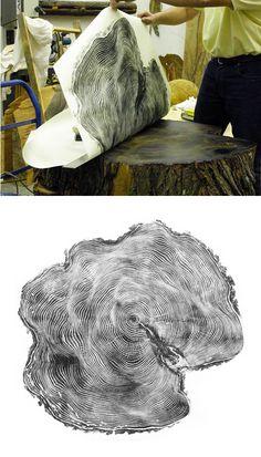 Tree stump prints.