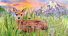 Original Colored Pencil Drawing Mountain Deer Animal Art via Nature Drawings. Click on the image to see more!