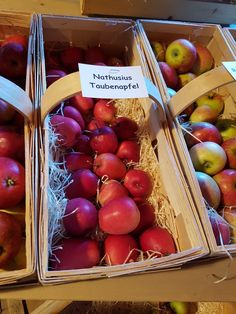 Cherry, Fruit, Vegetables, Food, Harvest Season, Meal, The Fruit, Essen, Vegetable Recipes
