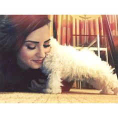 ddlovato's photo on Instagram - ddlovato    I really am so in love with this little guy... My little baby. ❤️❤️❤️❤️❤️