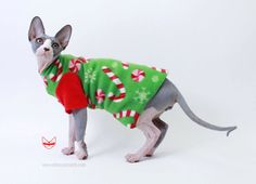 Christmas Pet Clothes Fleece Candy Cane with Red by SimplySphynx