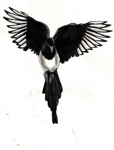I definitely like the idea of a magpie in flight