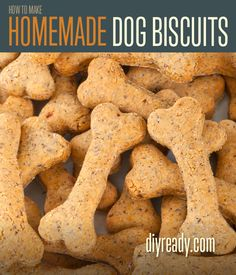 Homemade Dog Biscuits | Recipe and Instructions - DIY Ready | DIY Projects - DIY Ready | DIY Projects