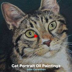 Oil painting For Beginners Horse - Oil painting Sunset Beach - Oil painting Videos Scenery - Oil painting Videos Dog - Oil painting Trees Leaves - Oil painting Ocean Beach Oil Painting Abstract, Painting & Drawing, Painting Clouds, Painting Trees, Painting Flowers, Painting Videos, Animal Paintings, Oil Paintings, Watercolor Paintings
