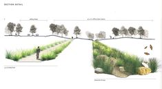 The Best Landscape Plan Drawing Section No 80 Landscape Architecture Section, Landscape And Urbanism, Landscape Drawings, Landscape Plans, Architecture Drawings, Cool Landscapes, Urban Landscape, Landscape Design, Architecture Diagrams
