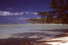 Club Med Moorea....Tahiti......the most beautiful place on earth!!