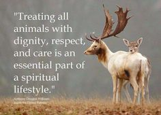 Fuelled with compassion, empathy, respect and love for ALL earthlings... EM-C Ⓥ