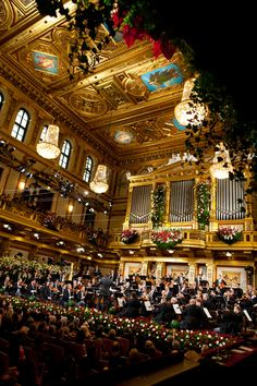 "The New Year Concert of the Vienna Philharmonic      takes place    each year in the morning of January 1 in Vienna, Austria.    As far as I can think back -   each New Year's Day I've listen to this concert  which gives me such a wonderful start,  ""waltzing"" into the new year!"