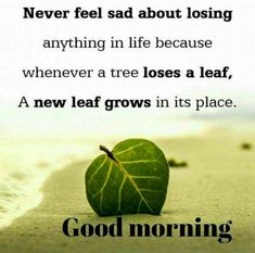 Inspirational Good Morning Quotes Free Download Good Morning Quote