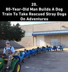 a little faith in humanity restored - Imgur
