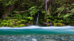 Bacon Creek, Mount Baker-Snoqualmie National Forest, Washington (© Ethan Welty/Tandem Stills + Motion) – 2016-04-02 [http://www.bing.com/search?q=Bacon+Peak,+WA,+United+States&form=hpcapt&filters=HpDate:%2220160402_0700%22]