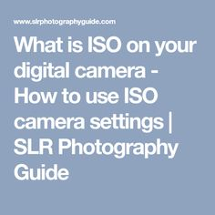 What is ISO on your digital camera - How to use ISO camera settings | SLR Photography Guide