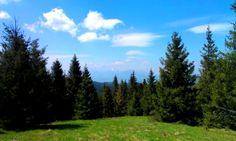 Pohľad na Tatry Mountains, Nature, Travel, Naturaleza, Viajes, Destinations, Traveling, Trips, Nature Illustration