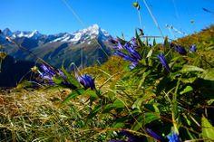 Bristenstock Maderanertal Uri (Schweiz)