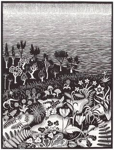 M.C. Escher's The Third Day Of Creation