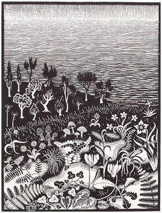 M.C. Escher's The Third Day Of Creation