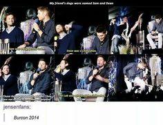 J2 // Supernatural // Jensen Ackles // Jared Padalecki // Padackles // Funny