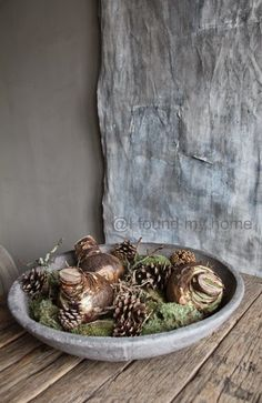 moss~pine cones~bulbs