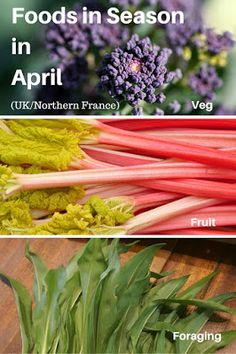 A Green and Rosie Life: Veg, Fruit and Foraged Foods in Season in April