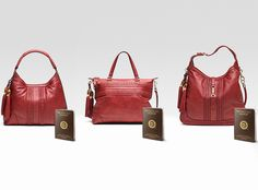 Must have #sustainable #Gucci #Bags