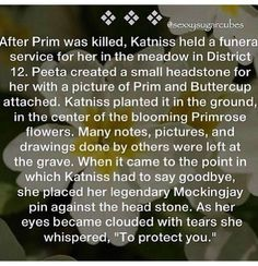 :'( It didn't do a very good job of protecting her the first time though... also, not book