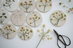 Wonderful Pictures Air dry Clay mobile Ideas otchipotchi: on my working table today – Fennel flower heads on air drying clay ♥ Ceramic Jewelry, Polymer Clay Jewelry, Ceramic Art, Ceramic Figures, Art For Kids, Crafts For Kids, Arts And Crafts, Art Crafts, Decor Crafts