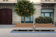 Cibic's Tree Trolley allows for a mobile parklet that can be parked in any urban parking space, while also servicing the community. The benefits of the urban trolley are great, reducing urban smog by replacing private hotspots with one operating wifi hotspot that can be accessed by everyone in the area. The trolley and can serve as a mobile work space–it's equipped with a USB charger–while also making neighborhoods safe by providing light and help buttons.