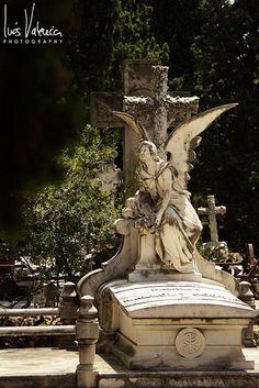 Cementerio de Montjuic (5) | Flickr - Photo Sharing!