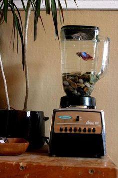 Retro fish bowl.
