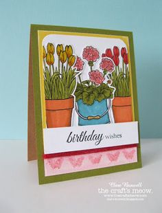 Clare's creations: The Craft's Meow August Release DT Blog Hop