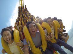 Hong Kong Best Theme Park & Attractions   Ocean Park Hong Kong