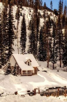 Beautiful Winter Scene, With Cabin and Pond. Source Facebook.com