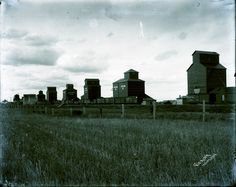 [Grain elevators at Indian Head] North Country, Canadian History, Indian Head, Grains, Canada, Places, Beautiful, Lugares, Korn
