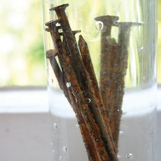 Make Your Own Iron Mordant Solution - DIY - MOTHER EARTH NEWS
