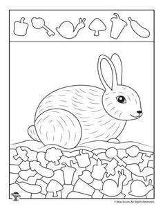 Snow Bunny Hidden Picture Activity