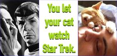You let your cat watch Star Trek.  He's now doing a Vulcan mind meld - you will give me more treats