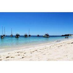 Beautiful Rottnest Island WA #rottnestisland #rottnest #island #westernaustralia #beach #beachphotography #nikond5500 #nikon #stunning by eebs.nikon http://ift.tt/1L5GqLp