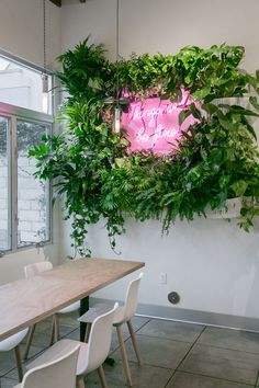 plants and neon