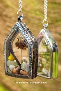 Twig Terrariums...idea, fill with resin, create box and inside treasures.