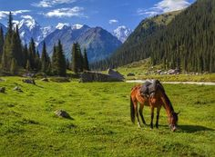 10 day Kyrgyzstan - Acanela Expeditions Max 16 people | $2,900/person | Spring