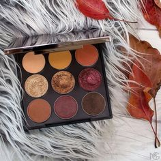 makeup geek AUTUMN GLOW EYESHADOW BUNDLE