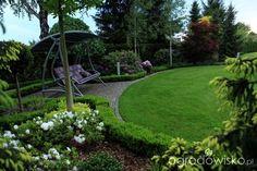 Ogród Dominiki - strona 343 - Forum ogrodnicze - Ogrodowisko