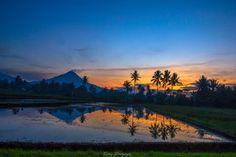 Dari Angle yg Berbeda . . #pagi #sunrise #sunrisephoto #sunrises #sunrisephotography #matahariterbit #morning #landscape #landscapephotography #landscaping #landscapes #landscapelovers #nature #naturephoto #sawah #ricefield #naturephotography #canon #canonphotography #magelang #indonesia #serikat_fi #kaskusphotography #exploreidku #geojateng #instanusantara