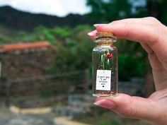 I Can't Say I Do Without You. Mensaje en una botella. Miniaturas. Regalo personalizado. Divertida postal de amor. de EyMyMessage en Etsy