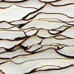 Wood Texture Design Ideas For Your Feature Home – Inbound Marketing Summit – Decor Trend 2020 Patterns In Nature, Textures Patterns, Color Patterns, Print Patterns, Paper Patterns, Texture Design, Wood Texture, Visual Texture, White Texture