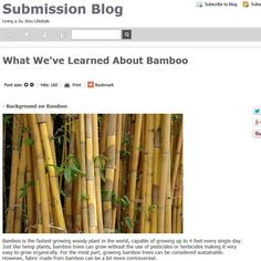 New Blog Post: What We've Learned About Bamboo Visit: SubmissionFC.com/blog