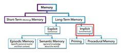 Memory Type: Implicit Memory