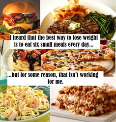 What am I doing wrong? Original Memes, Small Meals, Funny Stuff, Weight Loss, Good Things, Diet, Chicken, Food, Funny Things