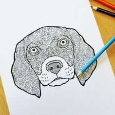Detailed Dogs A Complicated Canine Coloring Book Antony Briggs 9781517330965 Amazon Books